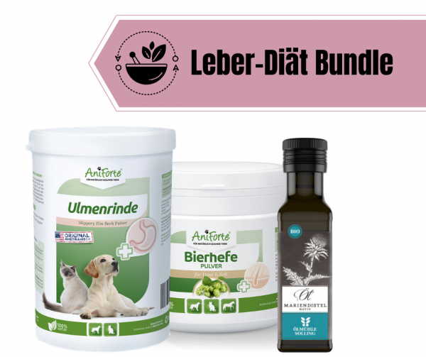 Leber-Diät Bundle