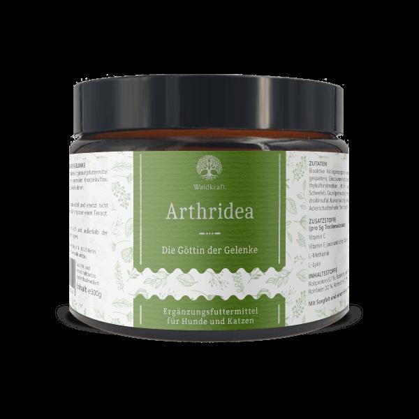Arthridea – Die Göttin der Gelenke